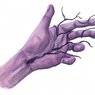 Een aquarel schildering van een paarse hand waar een donkere klimrank over groeit